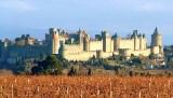 Carcassonne-vignes-470x268